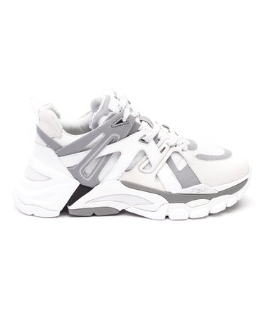 Ash Flash Sneakers
