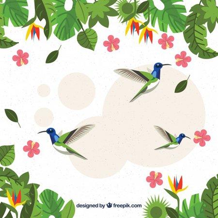 colibri spring
