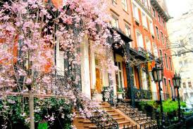city in spring - Google Search