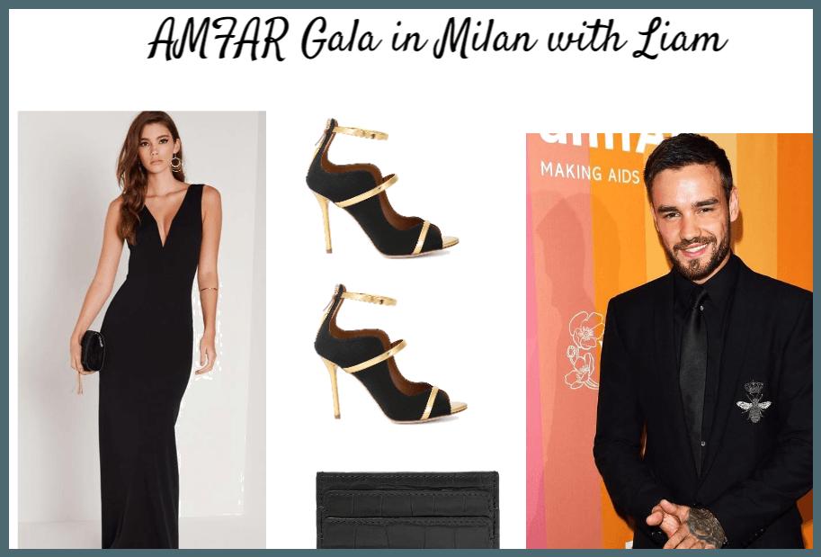 AMFAR gala in Milan with Liam